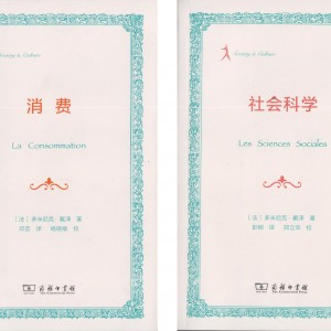 consommation-sciences-sociales-en-chinois-1500